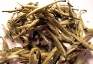 почки белого чая