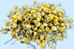 сушёные цветки ромашки