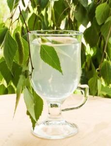 ветви берёзы и сок в бокале