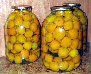 компот из абрикосов