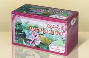 бадан толстолистный в коробке