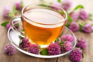 чай из клевера