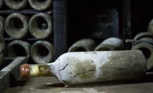 винная бутылка с плесенью