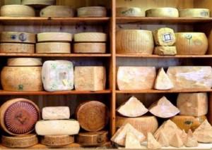 разный сыр