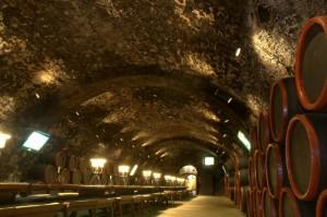 токайские подвалы