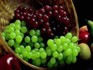 фрукты для виноделия